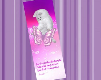 Set of two bookmarks with cat and haiku: kitten and Butterfly