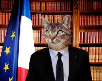 customizable digital creation: the Elysee cat