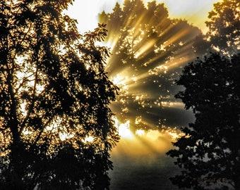 Heaven's Dawning