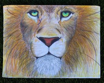 Green-Eyed Lion sketch