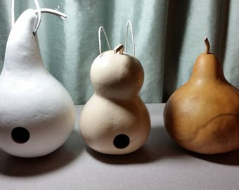 Design Your Own Gourd Birdhouse!