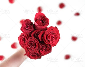 Love Is All Around Collection | Valentine's Day | Styled Stock Photography | Red Roses | Petals | Digital Photography