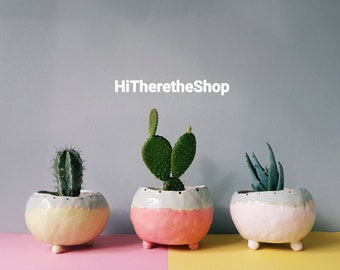 The Pastel Cauldrons -  Handmade succulent pot, cactus pot, plant pot, home studio pottery, ceramic, planter, pinch pot, pastel colours.