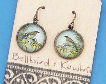 New Zealand Bellbirds with Kowhai flowers, vintage art print, songbird, Earrings, glass dome art, niobium hypo-allergenic
