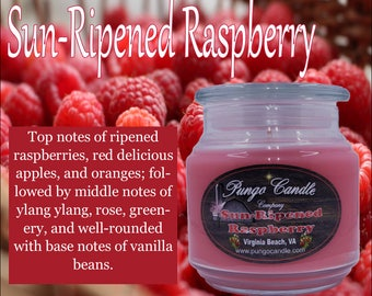 Sun Ripened Raspberry Scented Jar Candle (16 oz.)!