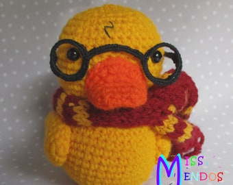 Duck disguised as Harry Potter