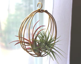 Wire Air Planter