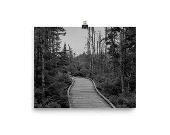 Walkway Print