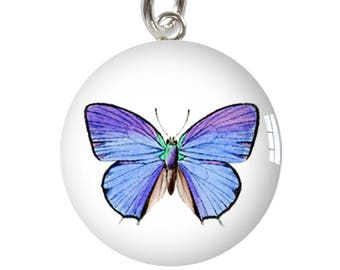 Meadow Blue Butterfly Sterling Silver Meniscus Charm Pendant