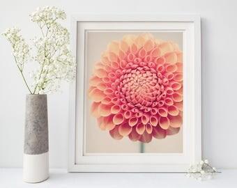 Dahlia Wall Art Print, Floral Wall Decor, Living Room, Bedroom, Nursery, Office, Flower Photography Print, Large Wall Art