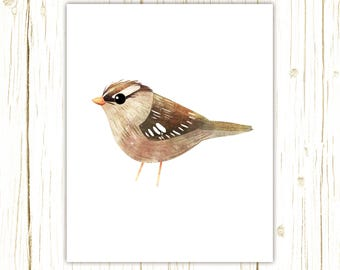 White-Crowned Sparrow Print -- bird art -- colorful bird art by stephanie fizer coleman illustration