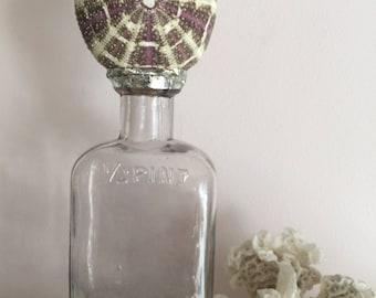Urchin Seashell Vintage Bottle