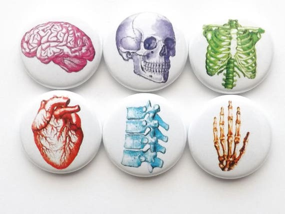 Stocking Stuffer Button Pin back school Anatomy Medical Gift badges spine men Fathers Day party favor anatomical heart skull student magnet