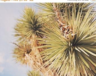 SALE Joshua Tree print, yucca photograph, desert wall art, Joshua Tree photography, living room wall decor, southwestern, minimalist, green,