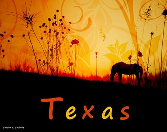 Texas Horse Art, Digital Photomontage, Equine Home Decor, Horse Silhouette Artwork, Colorful Typography, Wall Hanging, Giclee Print, 8 x 10