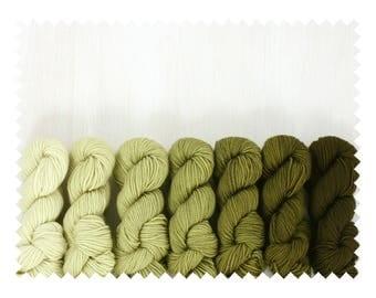 GRADIENT yarn set, FAVE sock: LIV