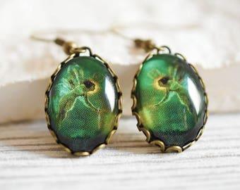 Good Luck Fairy Bronze Earrings - oval