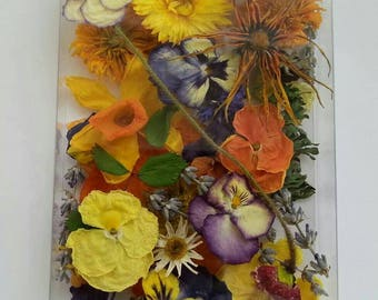 Etsy your place to buy and sell all things handmade for Dried flowers craft supplies