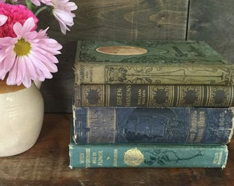 Vintage Shabby Book Stack, Book Bundle, Shelfie, Book Decor, Decorative Spines, Photo Prop Books, Wedding Books, Old Books Lot, Bookstagram