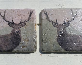 Stag Deer Set of 2 Tea Coffee Beer Coasters