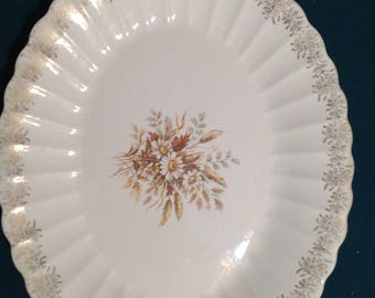 "16"" Oval  serving platter by Limoges China"