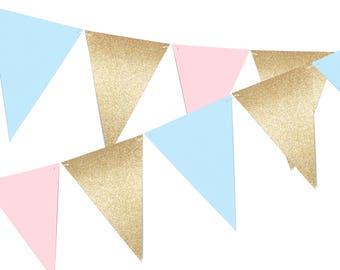 Gender Reveal Banner, Boho Pennant Banner Party Decor, 6ft Photography Prop, Triangle Flag Bunting Banner, Wild One Birthday - No803