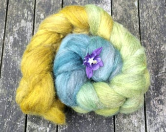 Hand dyed spinning fibre, Oatmeal Bluefaced Leicester, 120g, BFL combed tops, gradient dyed spinning fibre