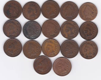 17 Different Indian Head Cents 1882-1908