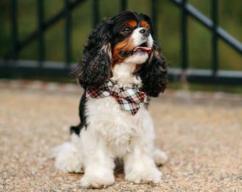 Tartan Plaid Bow Tie Dog Collar, Holiday Dog Collar, Bowtie Dog Collar, Red and Green Dog Collar, Fall , Scottish, Flannel, Christmas