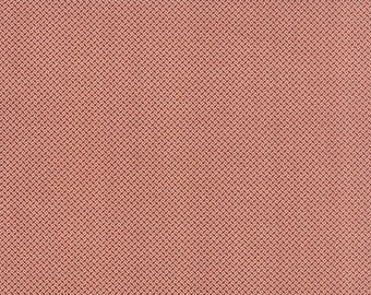 20 % off thru 7/4 moda fabric by 1/2 yard MINIATURE PRIMITIVE GATHERINGS-tiny cream square dots on rhubarb red 1155-13