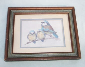 Vintage Framed Blue and Yellow Bird Matted Print Art - Home Decor