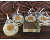Preserved English Daisy enclosed within round, square, oval, rectangular or oval clear Resin Pendant, attached to Leather Suede Necklace