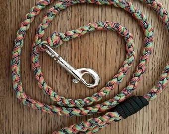 Rainbow Leash, Rainbow Paracord Leash, Braided Rainbow Leash, Rainbow Dog Leash, Rainbow Dog Gifts, Rainbow Dog Accessories, Paracord Leash