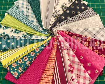 Washington Depot - Denyse Schmidt - FreeSpirit Fabrics