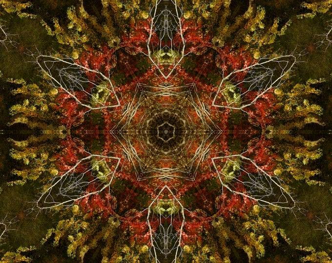 Autumn Kaleidoscope, Photo Art, Photography, Landscape, Digital Art, Digital Photography
