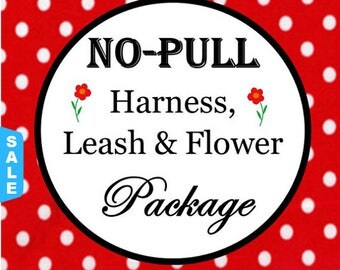 Sale - 50% Off No Pull Harness, 6 FT Leash & Flower Package - Available in all Dog Collar Listings - Fabric name is i