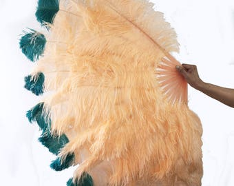 Apricot tip dye Teal Large Double Layer Ostrich Feather Fan 34''x60'' with gift box