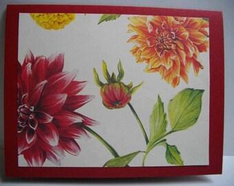 Dahlias 8-Card Box