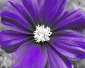 Purple Art Floral Print, Photo de fleur mauve, fleur pourpre photo, Decor chambre mauve, fleur mauve, mauve Decor, imprimé fleur, violet
