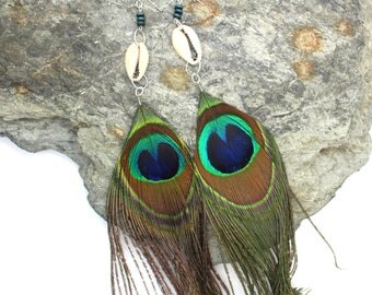 Peacock Feather Earrings - Peacock and Cowrie Shell Feather Earrings, Long Earrings, Feather Earrings