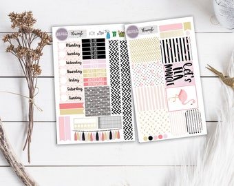 Let's Flamingle Black and Pink Planner Stickers ECLP Happy Planner