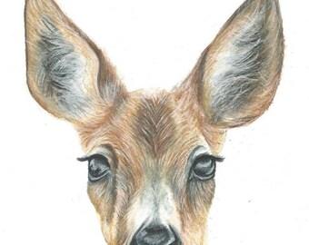 Deer Nursery Art - Watercolour Pencil Drawing