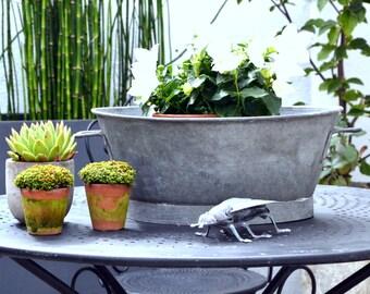 Bowl planter zinc vintage French 1930s