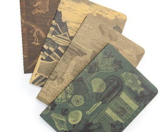Earth Science Pocket Notebook 4-pack | Field Notes Science Gift Dinosaur Geology Fossils Recycled Secret Santa paleontology rocks