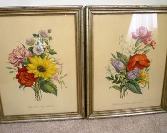 Botonicals Floral - Lithograph, Print Frame ~No. 23- OEllets, Phylox, Mauve, Soleil vivace ~No 12- OEilles, Coquelourdes, Jasmin, d Espagne