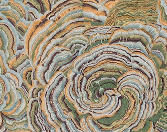 TREE FUNGI Grey PWPJ082.GREYX Philip Jacobs Kaffe Fassett Collective Sold in 1/2 yd increments