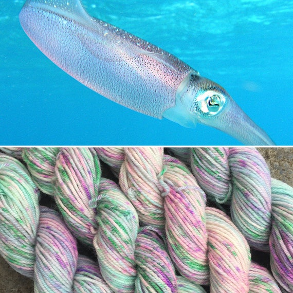 Caribbean Reef Squid 20g Miniskein, merino nylon blend speckled sock yarn