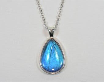 Blue Morpho Butterfly Wing Teardrop Pendant Necklace Antique Silver Jewelry