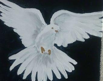 Dove Descending