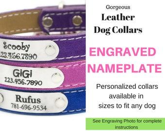 dog choke collar instructions